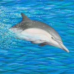 Energie-Delphin - Kunstdruck