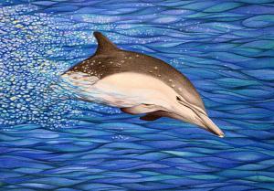 Energie-Delphin - Passepartout