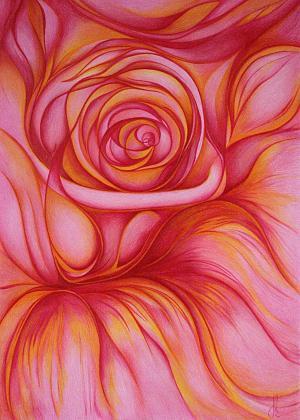Die Rose - Postkarte Passepartout